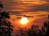 sunset yard